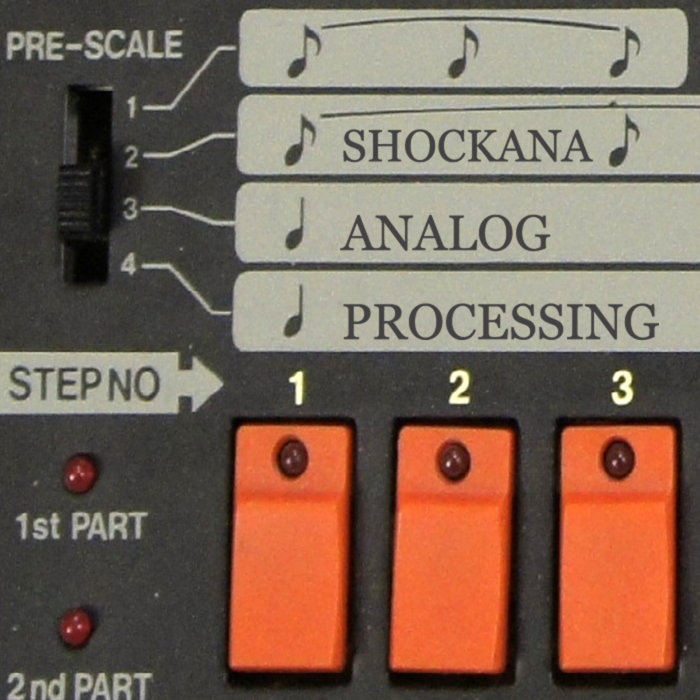ANALOG PROCESSING, by SHOCKANA